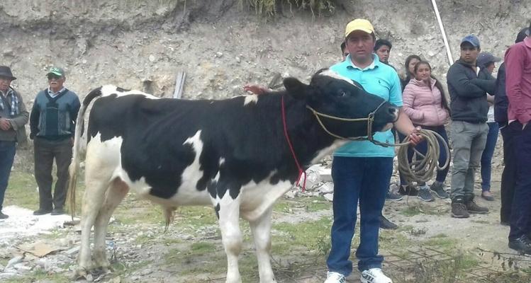 EXPO-FERIA GANADERA Y AGRICOLA.